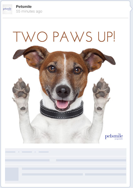 Petsmile social media post